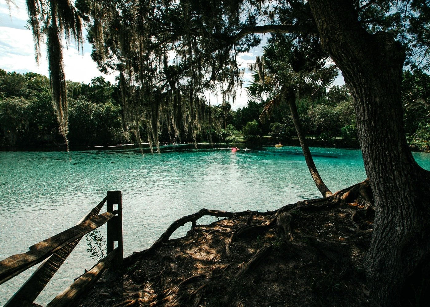 Silver Glen Springs © Susan Blake, US Forest Service